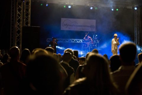Aglientu Blues Festival 2011 - Andy J Forest