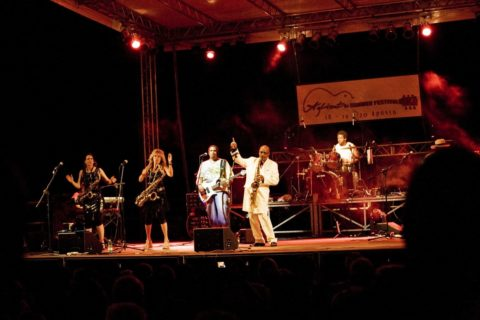 Aglientu Blues Festival 2011 - Sit Waldo Whethers